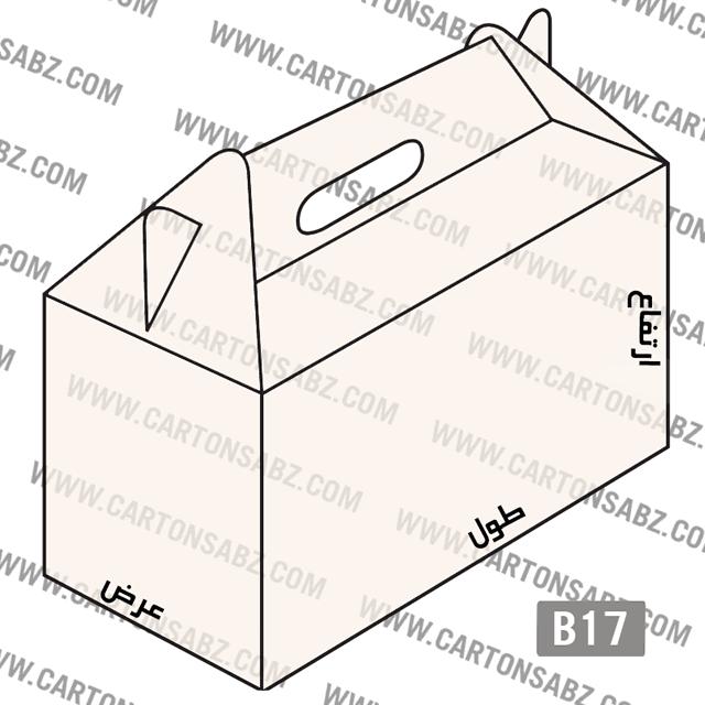 کارتنB17